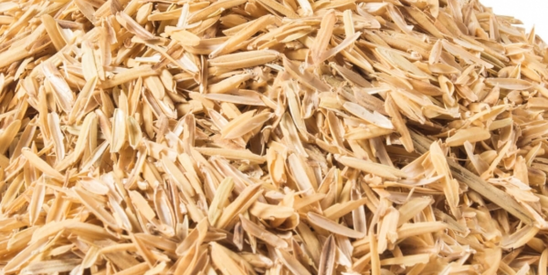 A second life for rice waste