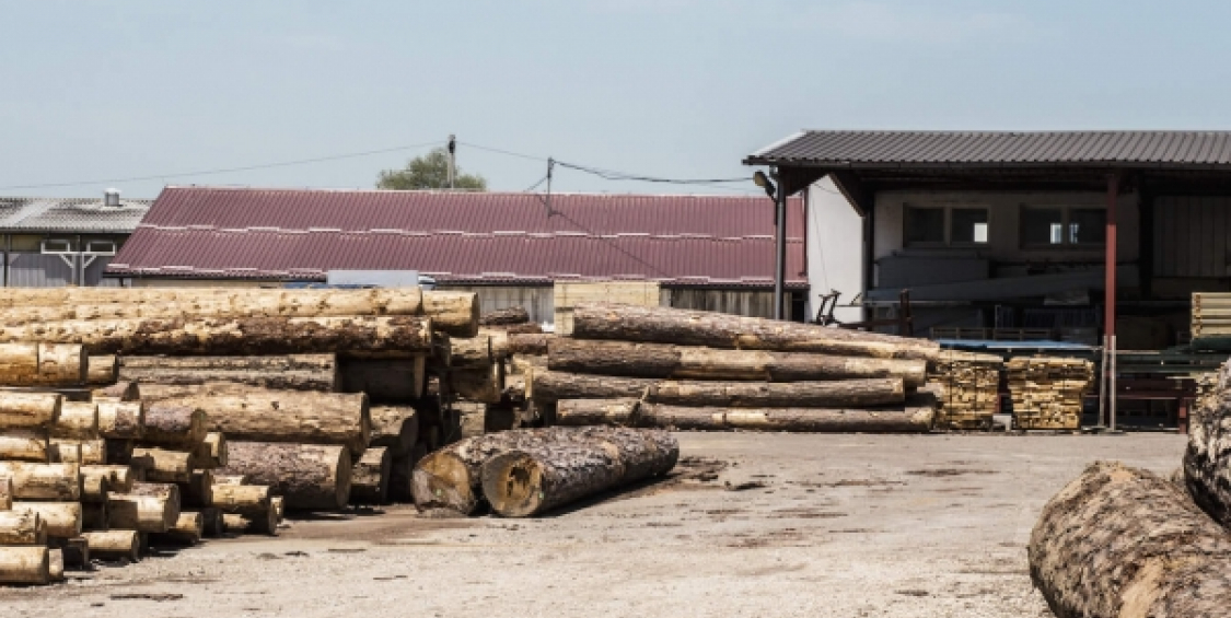 Laser and X-ray scanning of logs