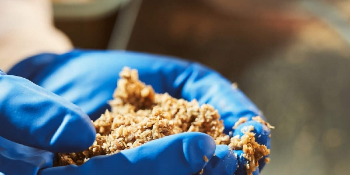 Converting distillery waste into a product and energy