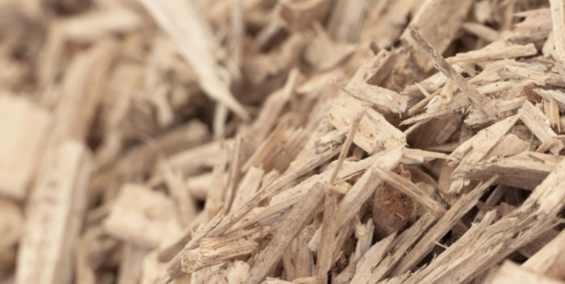 Biomass heat for accommodation services